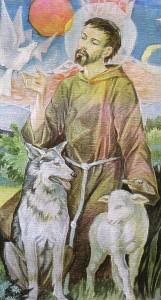 Damaso Bianchi, immagine ridotta